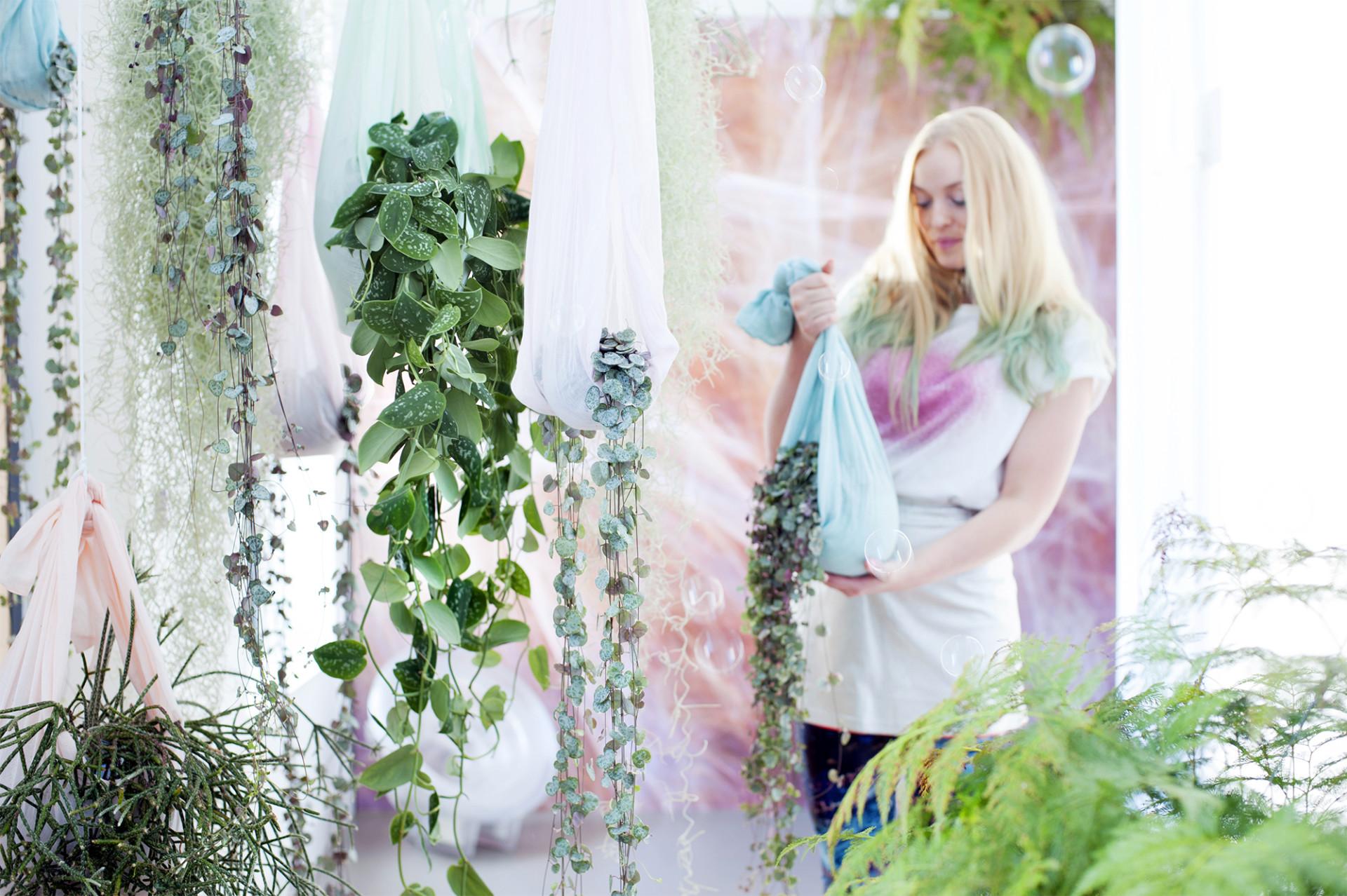 Groene en bloeiende hangplanten zijn de woonplanten van de maand ...
