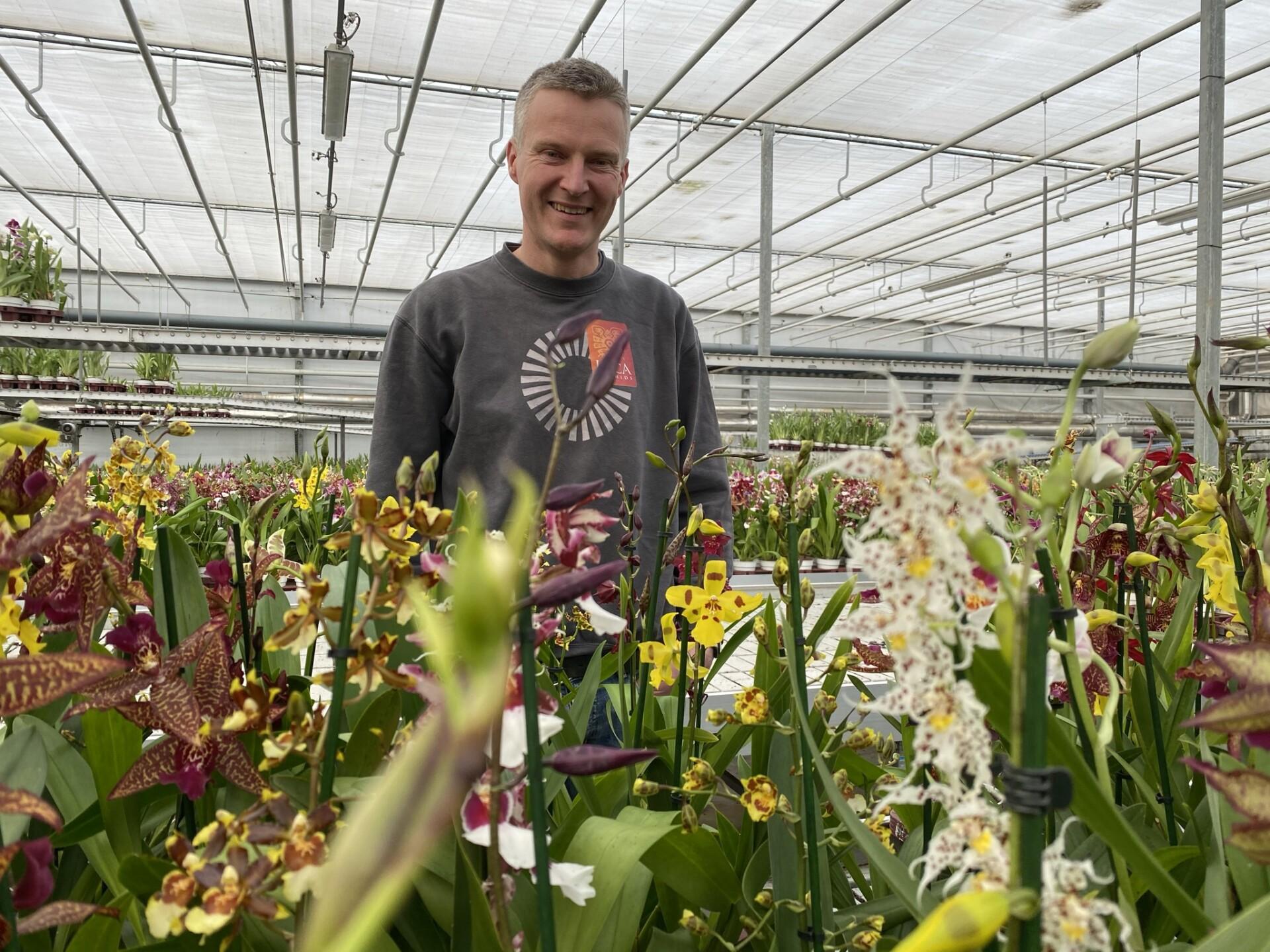 Inca Orchids Andre van der Goes